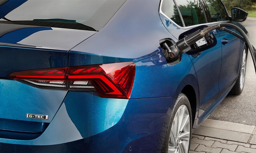 Octavia mit Gasantrieb nun bestellbar autocenter grimmen vorpommern greifswald ruegen2
